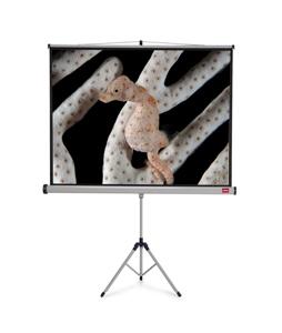Projekční plátno NOBO se stativem, 200 × 151 cm (4 3)